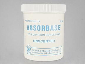 Absorbase